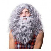 Hagrid med Skägg Grå Peruk
