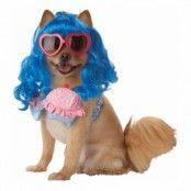 Katy Perry Hund Maskeraddräkt