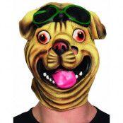 Heltäckande Bulldog Latexmask